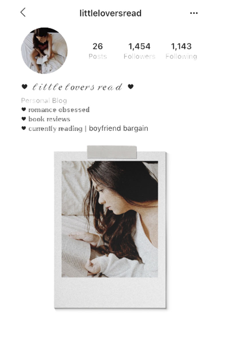 Instagram Profile | Little Lovers Read
